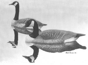 Waterfowl Stamp Exhibit