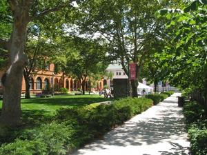 Summer Hours & Admission
