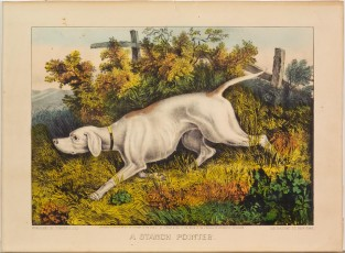 A Stanch Pointer, Currier & Ives