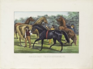 American Thoroughbreds, Currier & Ives