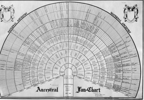 Ancestral Fan Chart - Perry Family Tree