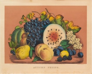 Autumn Fruits, Currier & Ives