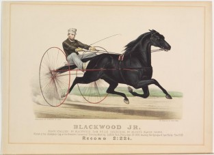 Blackwood Jr., Currier & Ives