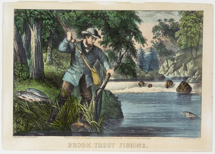 Fisherman preparing to pull fish on line up and out of river
