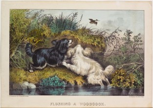 Flushing A Woodcock, Currier & Ives