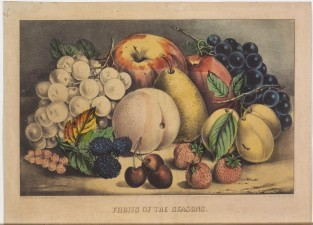 Fruits Of The Season, Currier & Ives