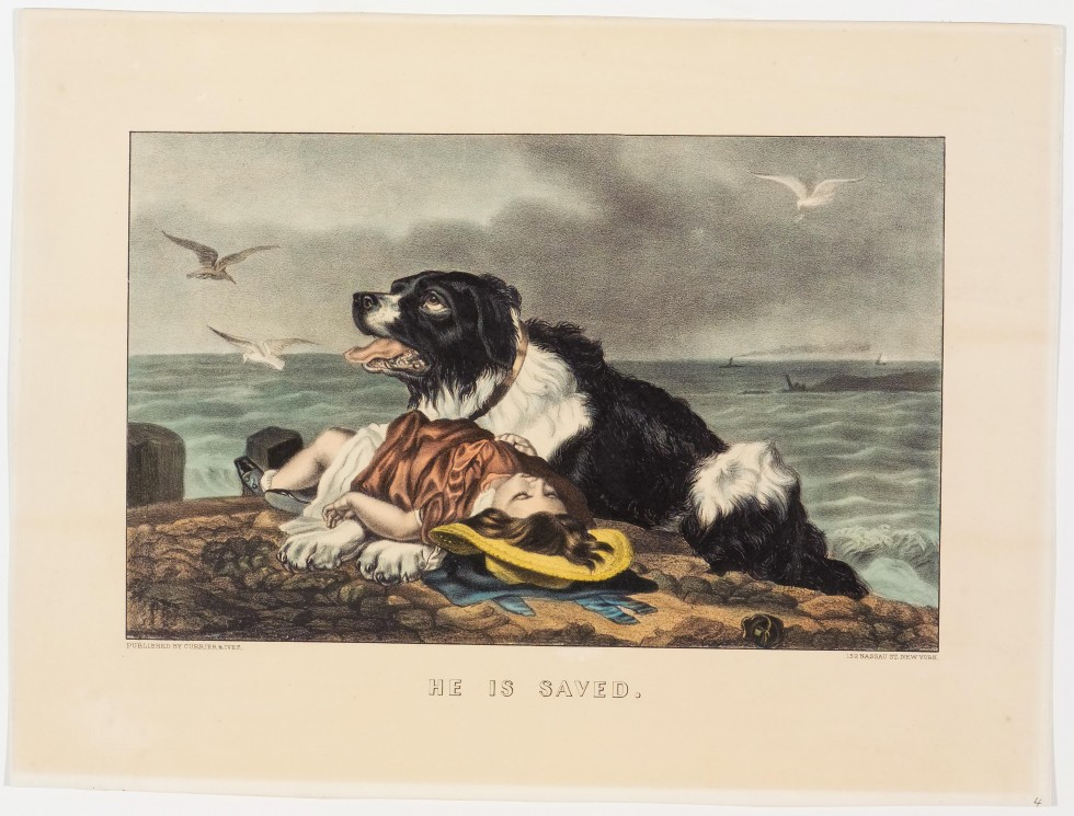 Black and white dog facing up and left resting on beach with supine body of young girl in pink dress lying across its front paws - sea in background