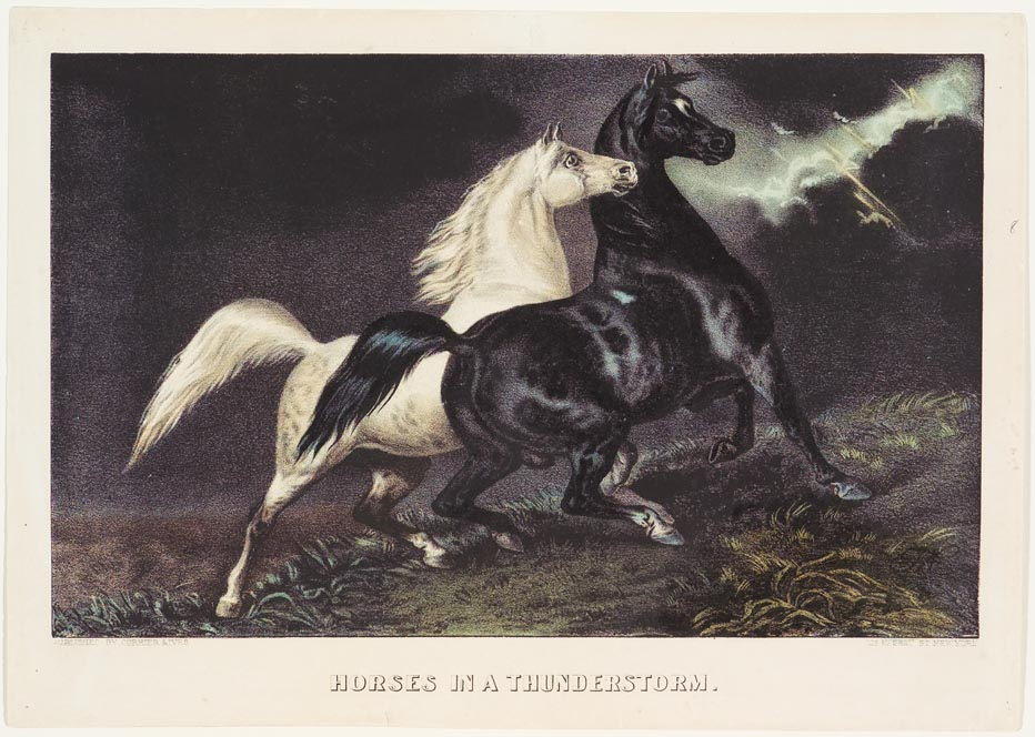 Stormy evening scene on prairie with a black and a white horse at center