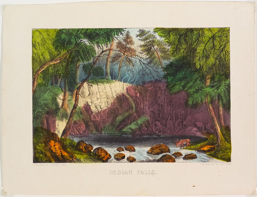 Woodland scene at stream nestled in a valley