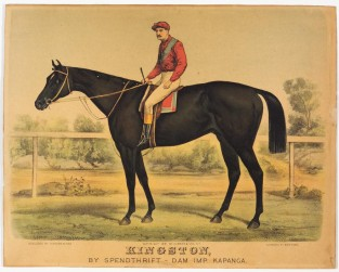 Kingston, By Spendthrift – Dam Imp. Kapanga, Currier & Ives