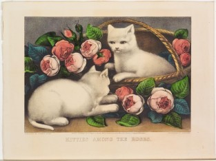 Kitties Among The Roses, Currier & Ives