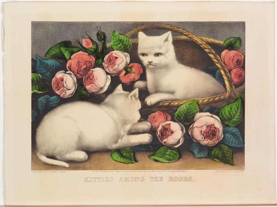 Two white kittens at center; one in basket to right facing viewer