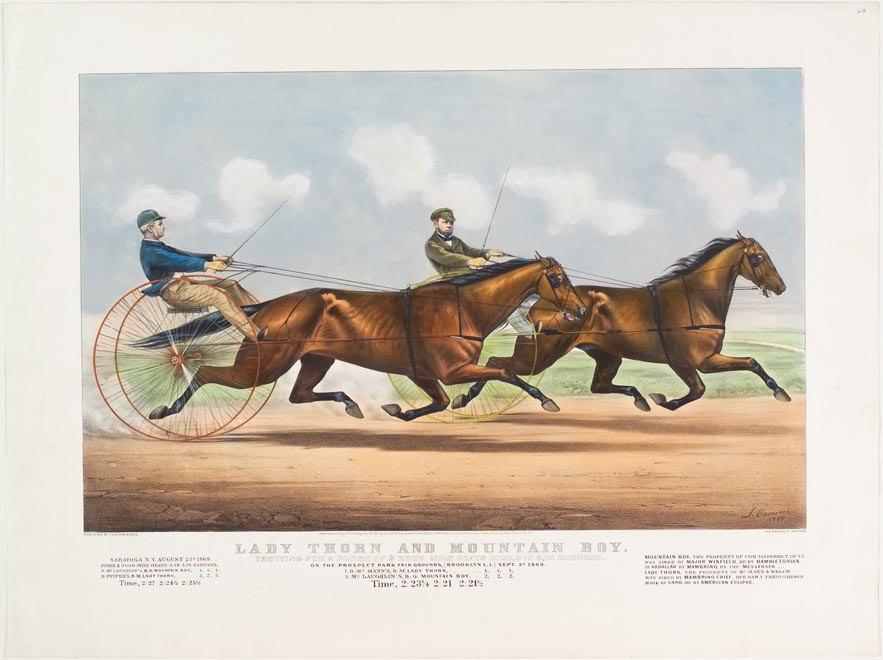 Two trotters racing to the right in image