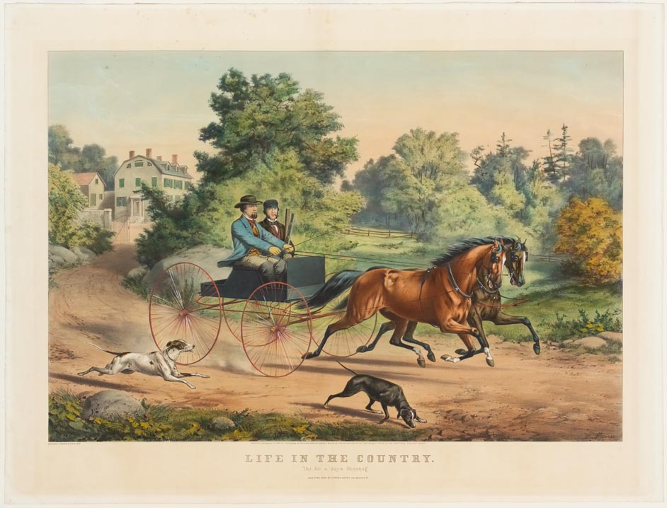 Two men in buggy with dual team horses riding down lane with two dogs running aside