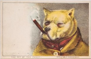 The Pet Of The Fancy, Currier & Ives