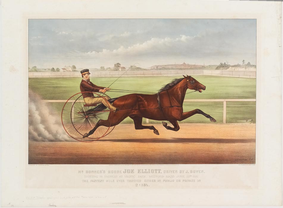Horse and driver racing to right in image