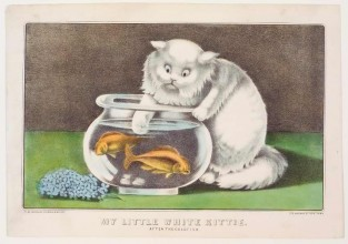 My Little White Kittie. After The Goldfish, Currier & Ives