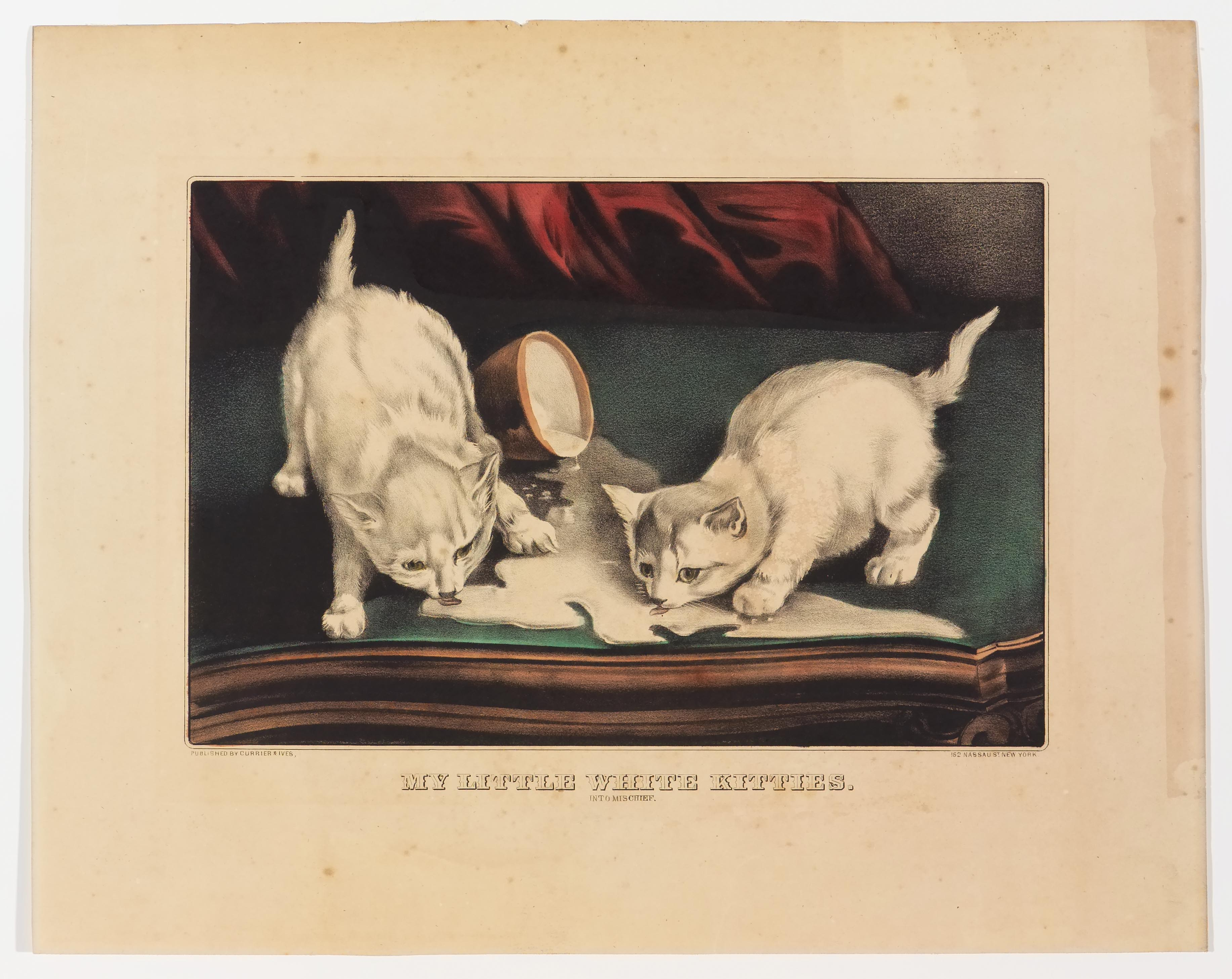 Two white kittens on a table top facing center licking up milk spilled out of a bowl in center