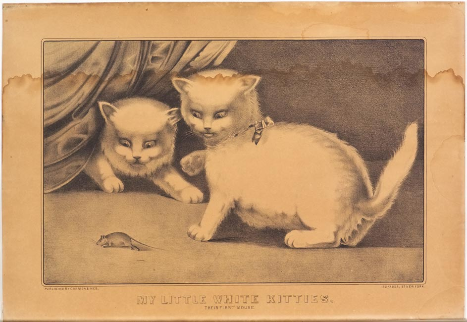 Two cats facing a mouse in lower left of image