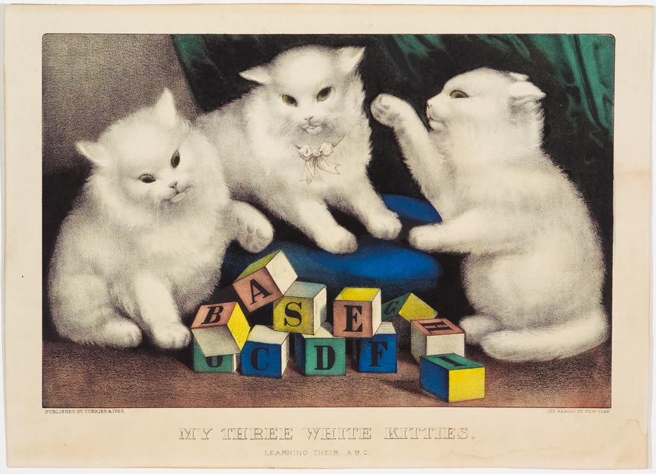 Three white kittens at play with colored wooden alphabet blocks