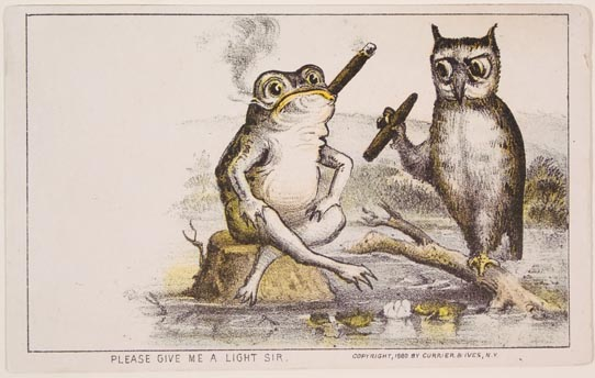 Frog sitting on rock in water smoking cigar joined by owl on branch in water smoking a cigar