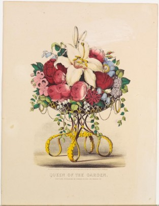 Queen Of The Garden, Currier & Ives