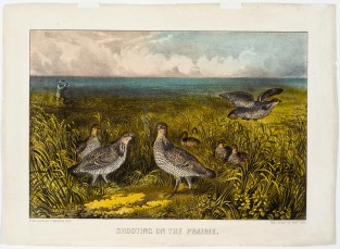 Shooting On The Prarie, Currier & Ives