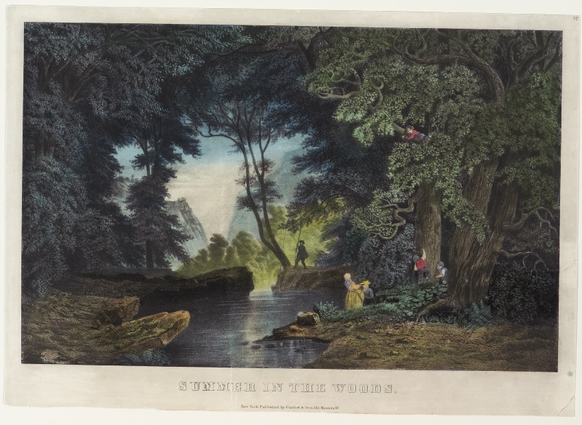 Woodland scene - man on right riverbank in background fishing in stream