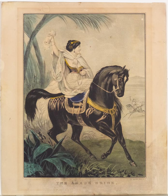 Woman in white astride black horse facing to right in image