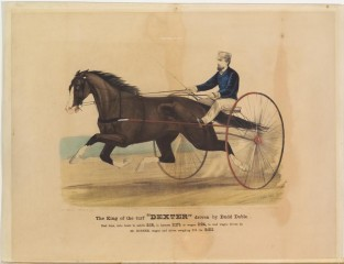 "The King Of The Turf ""DEXTER"" Driven By Budd Doble., Currier & Ives"