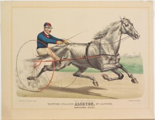 Trotting Stallion ALCRYON, By Alcyone, Record 2= 15 1/4, Currier & Ives