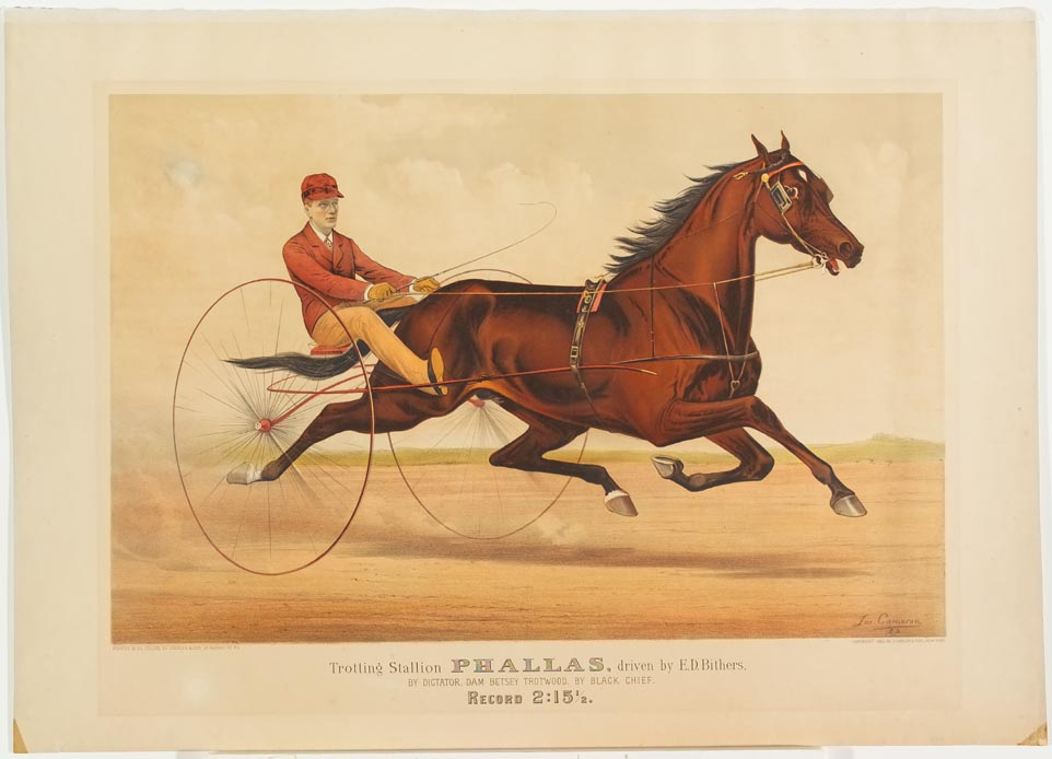 Driver and horse trotting to right on track