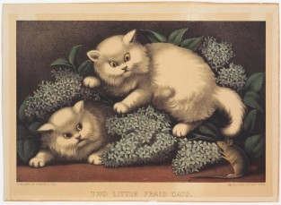 Two Little Fraid Cats., Currier & Ives