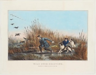 Wild Duck Shooting, Nathaniel Currier