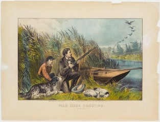 Wild Duck Shooting. On The Wing, Currier & Ives