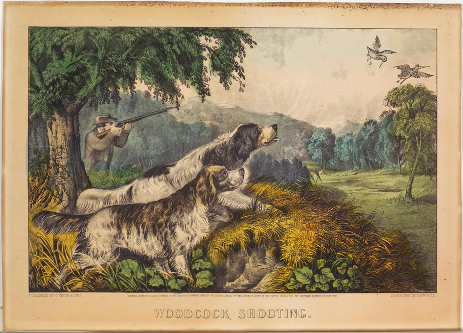 Woodland scene - two hunting dogs in foreground