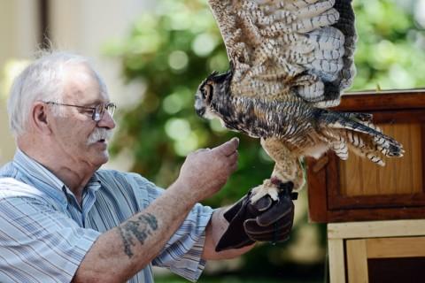 Tom Ricardi with an owl