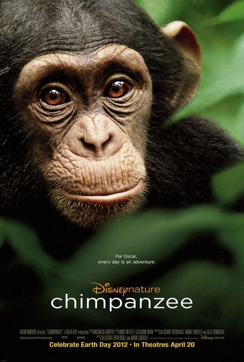chimpanzee-movie-poster