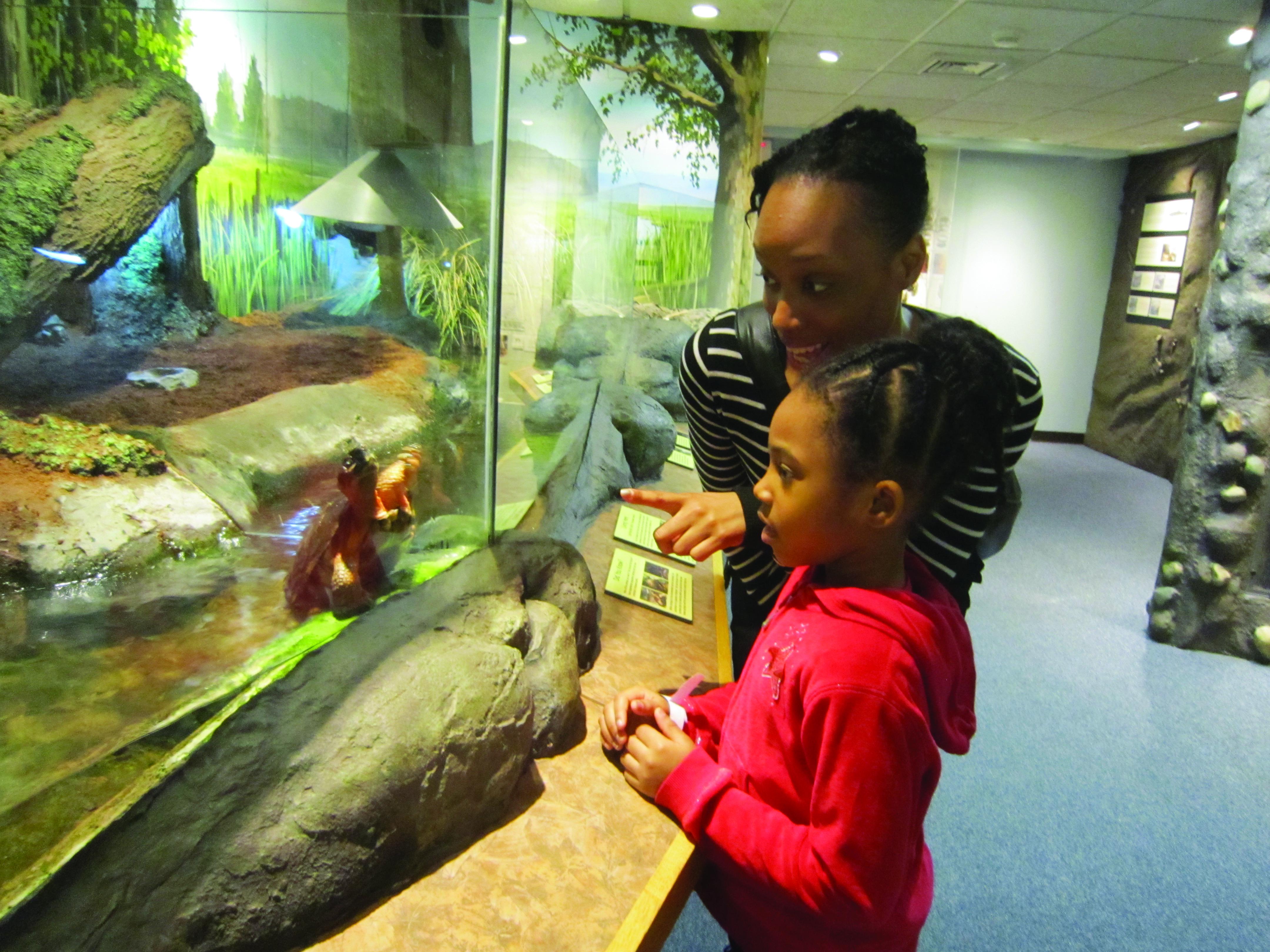 Home Schoolers: Museum Explorations