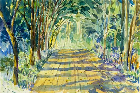 Watercolor painting of path in woods