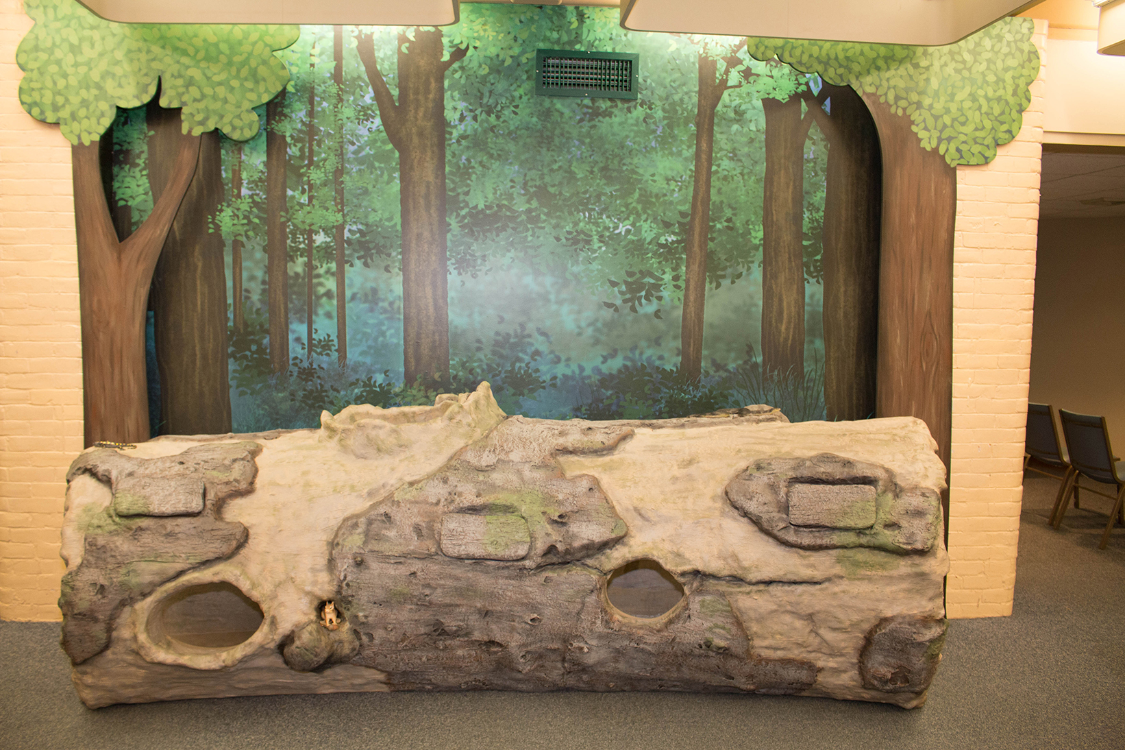 NEW Fallen Log Interactive At Springfield Science Museum