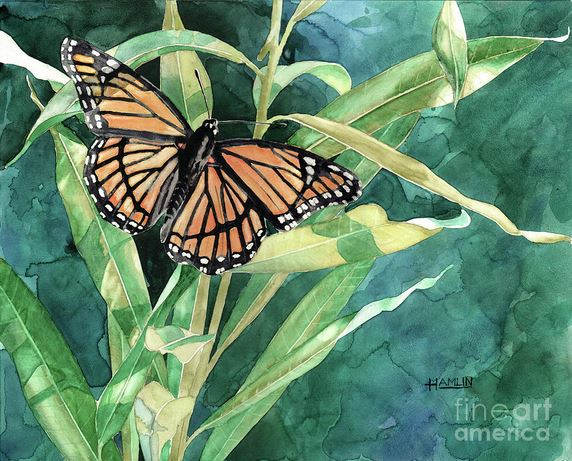 Painting Butterflies In Watercolor