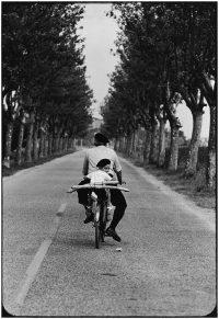 France, Provence, 1955