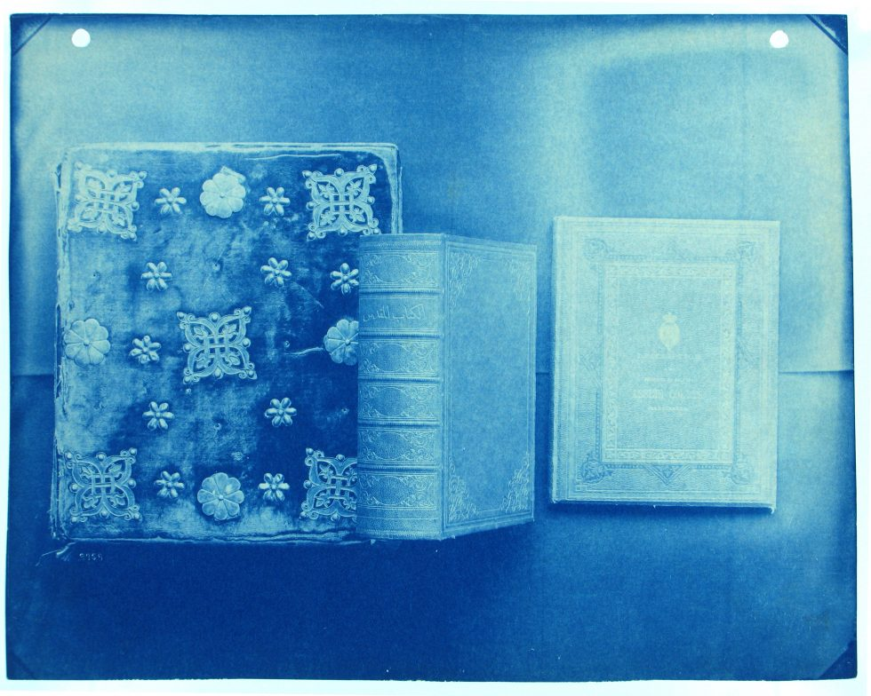 Cyanotype photograph