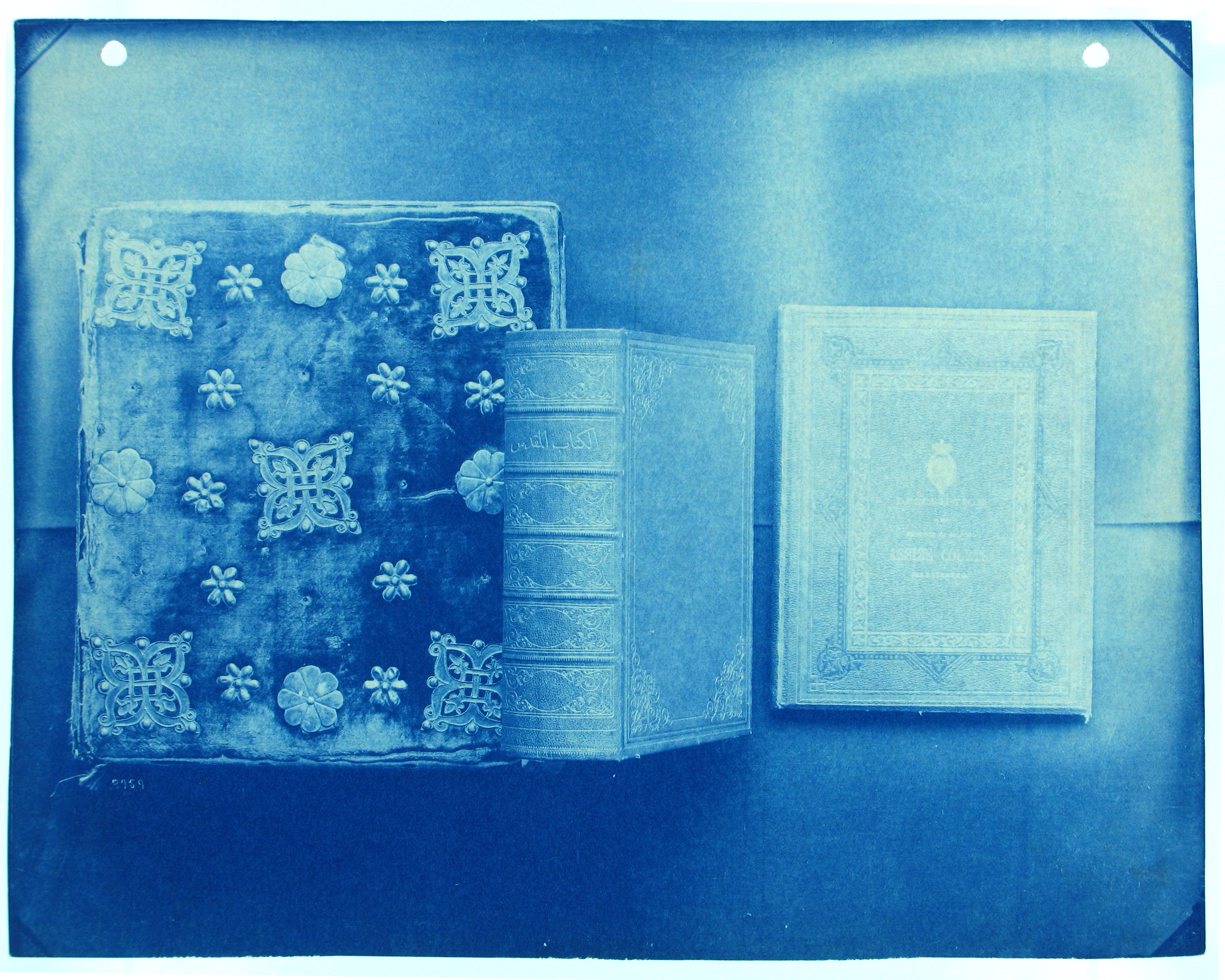 Photography: The Beautiful Cyanotypes