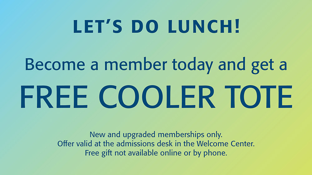 Free Lunch Tote with New Membership