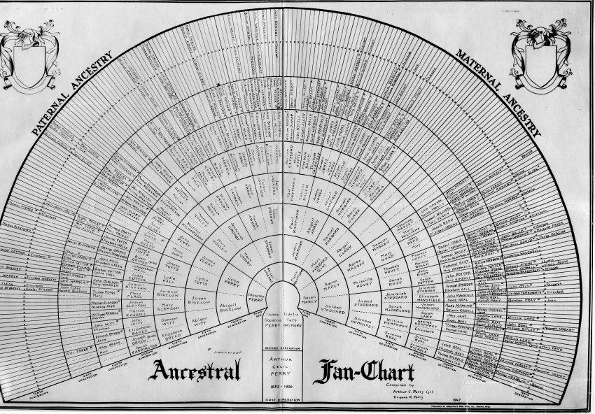Ancestral Fan For Showing Genealogy