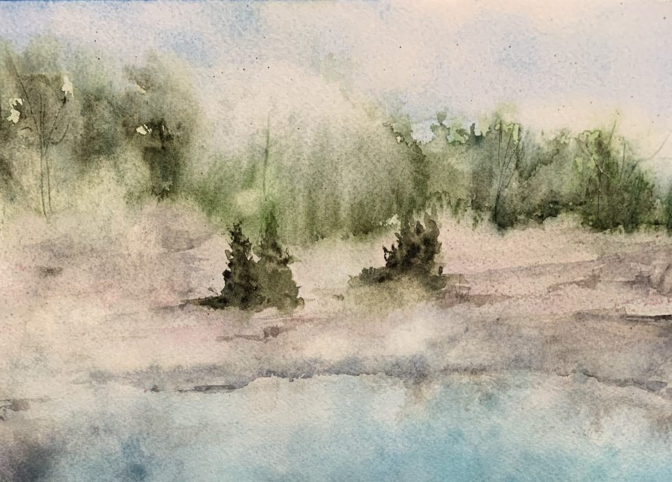 Watercolor painting of evergreens