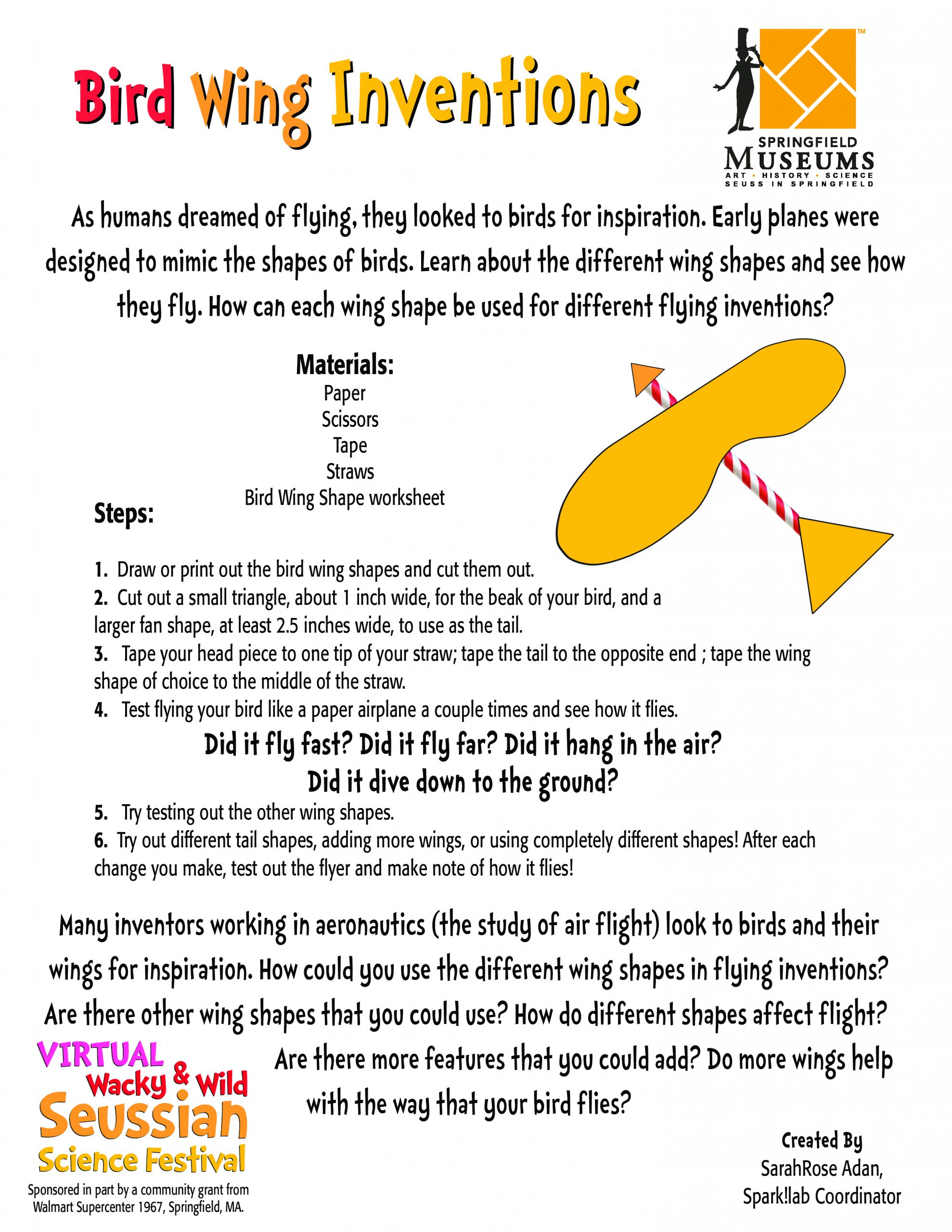 Bird Wing Activity Instructions