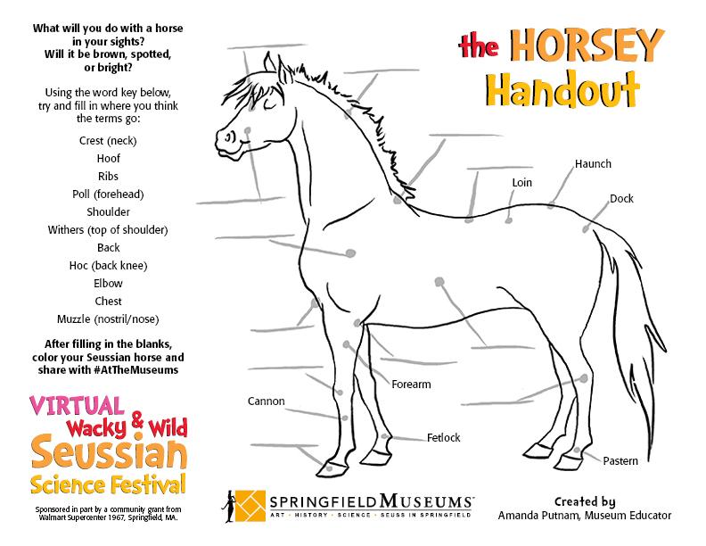 The Horsey Handout